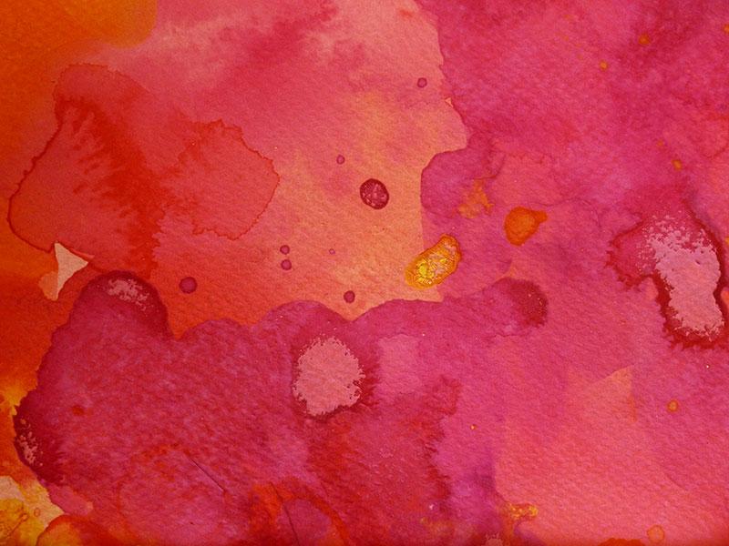 Coral Garden 1 by Christine Donaldson
