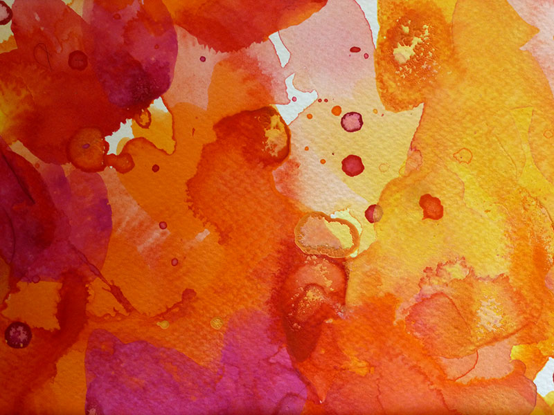 Coral Garden 3 by Christine Donaldson